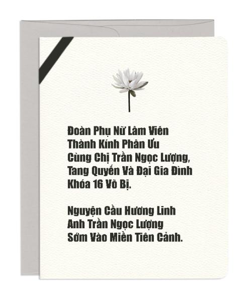 Anh-TranNgocLuong-K16